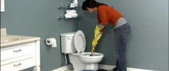 девушка прочищает унитаз